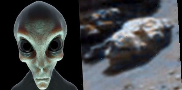 Life on Mars: Alien reptile face discovered on Mars – claim