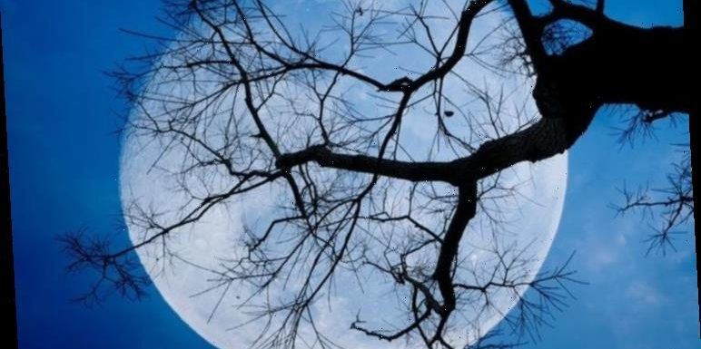Full Blue Moon on Halloween: How to see the Hunter's Moon