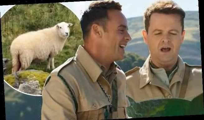 I'm A Celeb 2020 FIRST LOOK: Ant & Dec dumped in the Welsh countryside