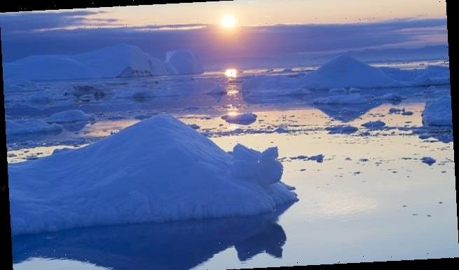 Melting of light-coloured Arctic sea ice accelerates global warming