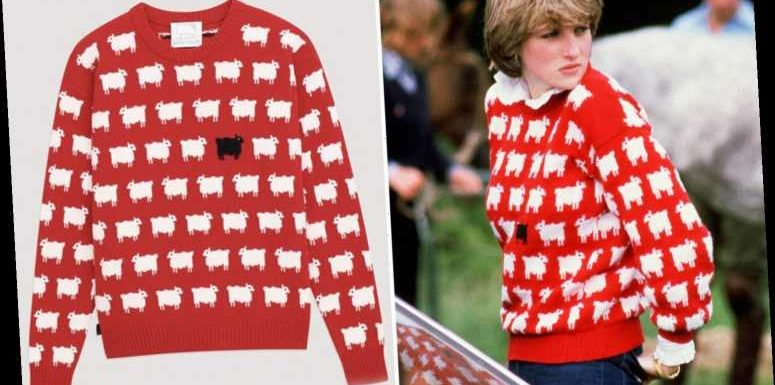 Princess Diana's iconic sheep jumper from the 80s is going back on sale – but it's not cheap – The Sun