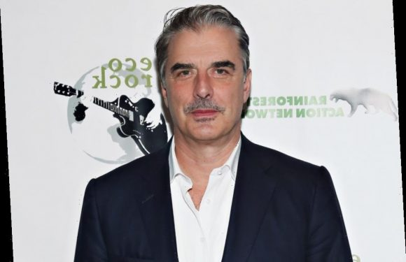 'The Good Wife': Chris Noth Took Peter Florrick Role Because Playing a Disgraced Politician Was 'Really Appealing'