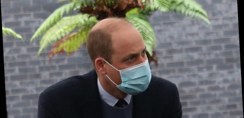 Prince William paves the way for new cancer centre 30 years after mum Princess Diana opened wing