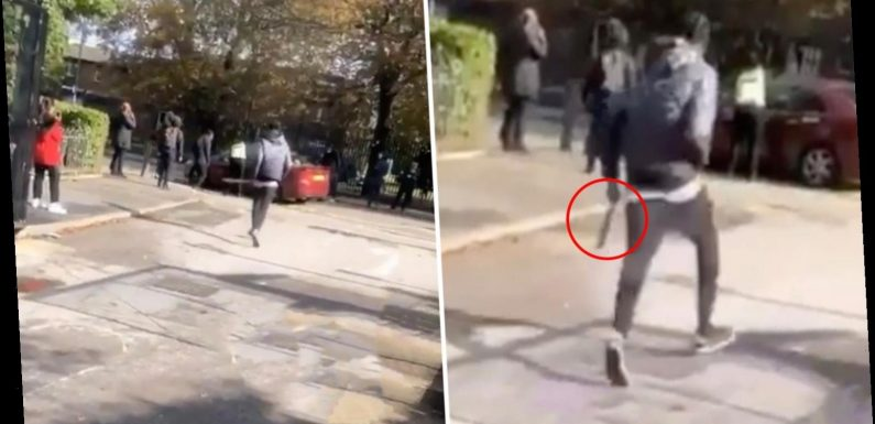 Student, 16, filmed smashing car with huge blade outside college as driver flees