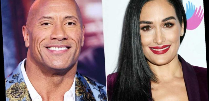 Nikki Bella Addresses Backlash Over Support for Dwayne Johnson Book After Actor Endorses Joe Biden