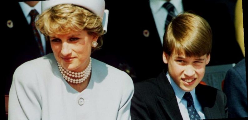 Princess Diana movie bans Brit boys from Prince William role because of Brexit
