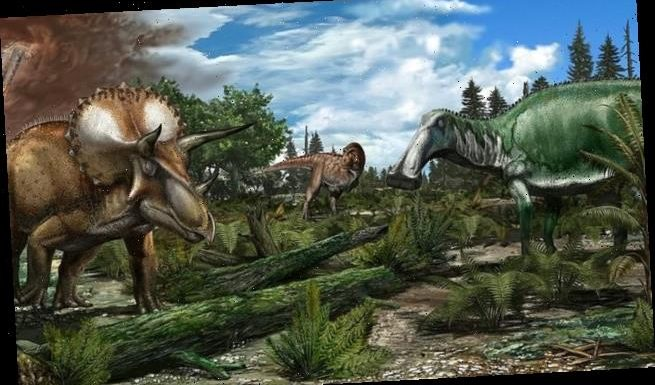 Dinosaurs were THRIVING being wiped out 66 million years ago