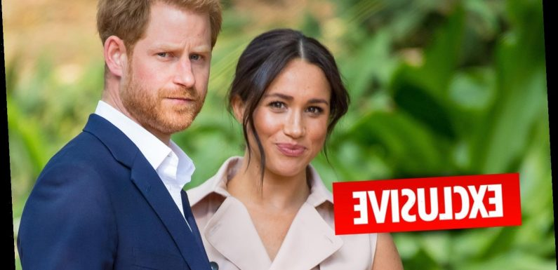 Meghan Markle hires two publicity experts in desperate bid to save her ailing image after embarrassing PR blunders