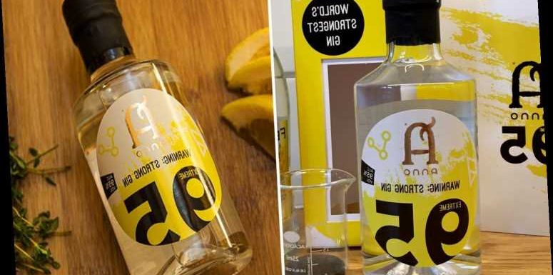 The world's strongest gin has just been released – with a hair-raising 95% ABV