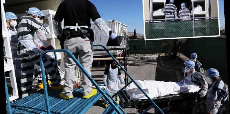 Chilling pictures show prisoners stacking Covid bodies in trucks as Texas morgues overflow