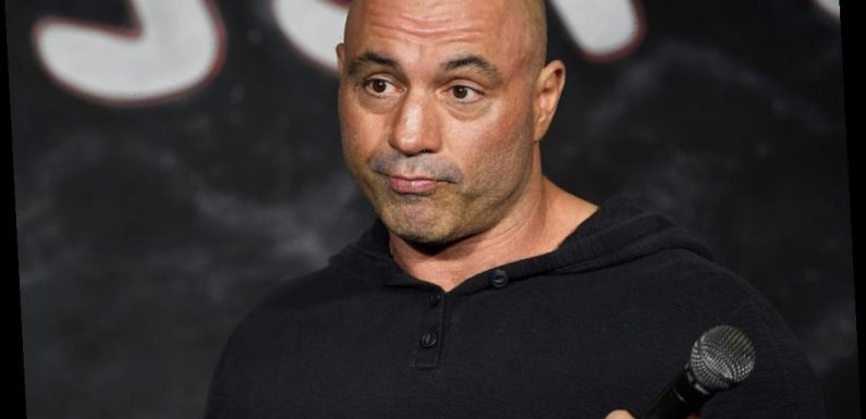 Joe Rogan Said Hunting Animals Is 'Psychedelic' and a 'Transformative Experience'
