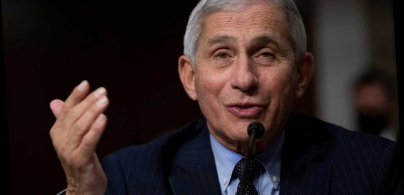 Pfizer COVID-19 vaccine could be given by the end of the year: Fauci