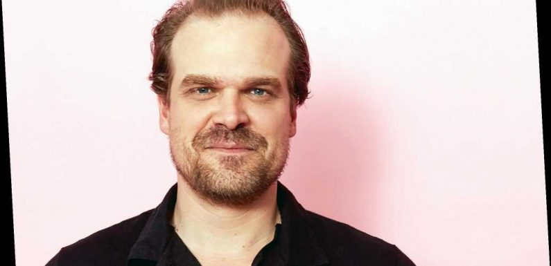 David Harbour Says His Stranger Things Audition Felt Like His 'Last at Bat'