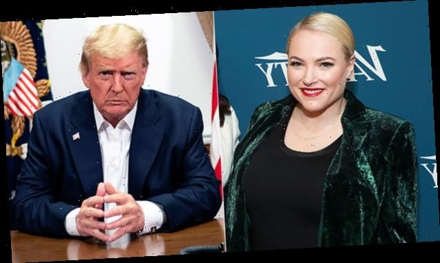 Meghan McCain Trolls Trump For 'Losing Arizona' With Hilarious Meme Of Her Dad: 'Too Funny