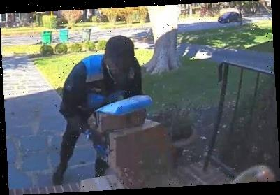 'Porch pirate' dressed as Amazon driver steals packages from Virginia stoop