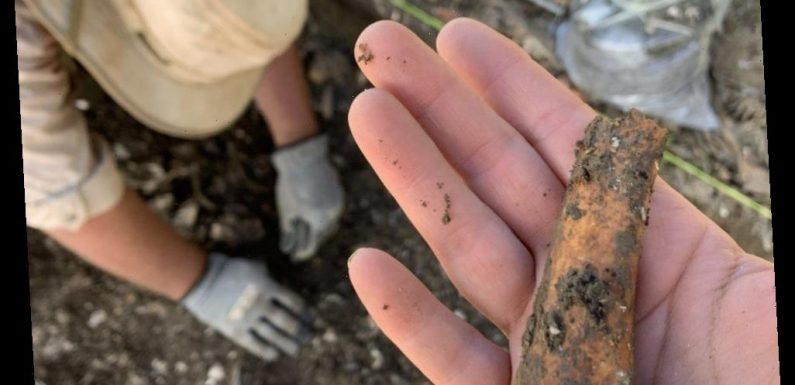 Archaeologists unearth 300-year-old slave quarters at historic Southern Maryland plantation