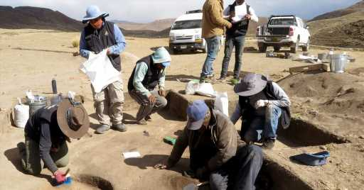 Ancient Remains in Peru Reveal Young, Female Big-Game Hunter