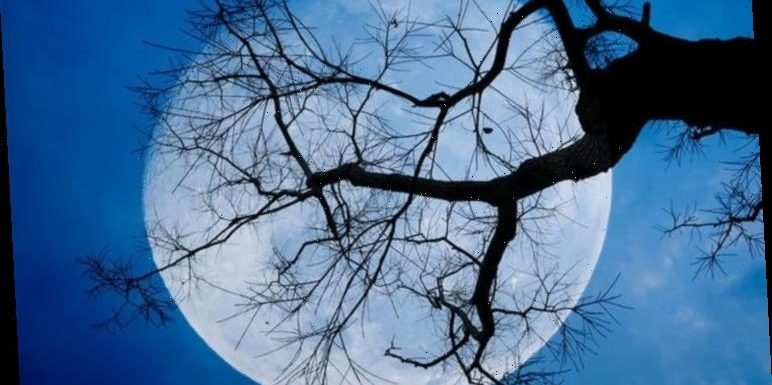 Full Moon meaning: What is the meaning behind December's Cold Moon?