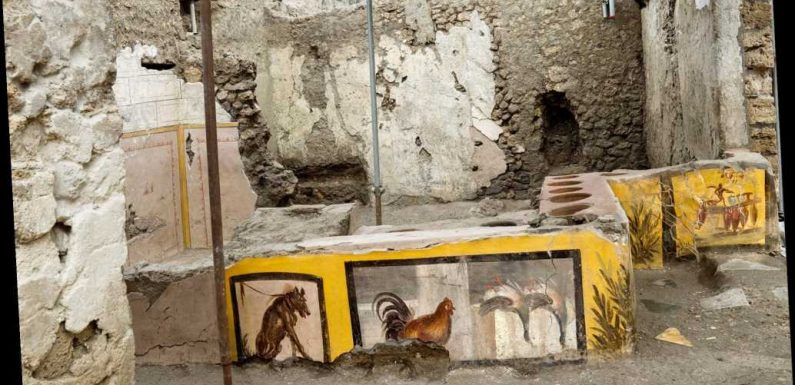 Unearthed Pompeii food cart  reveals snacks ancient Romans ate