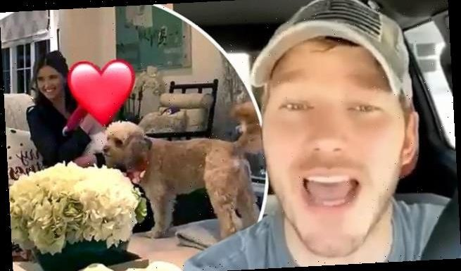 Chris Pratt and daughter Lyla visit mother-in-law Maria Shriver's home