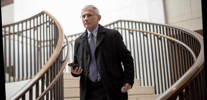 What is Dr Fauci's net worth?