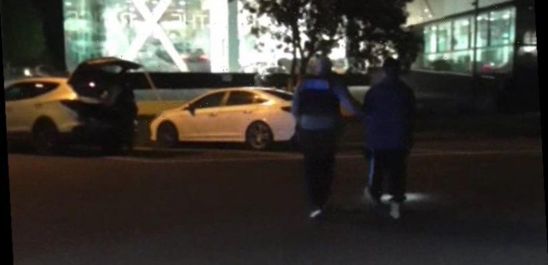 Police pull over truckie on Southbank, then find drugs and $5m in cash