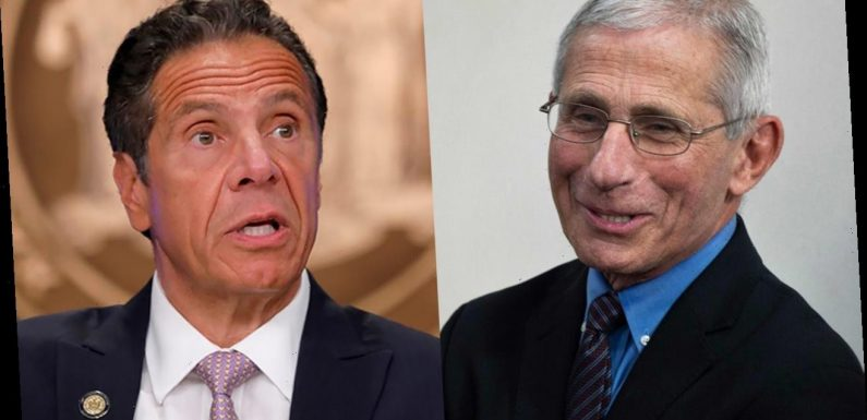 Cuomo suggests Fauci team-up: 'We're like the modern-day De Niro and Pacino'