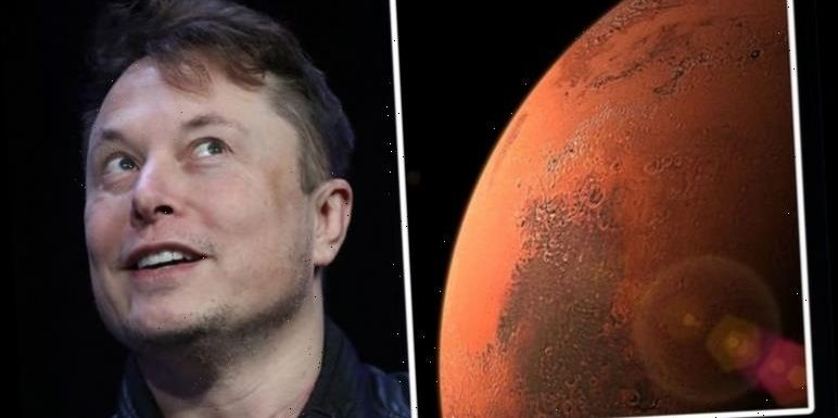 Elon Musk's plan to send one million people to Mars boosted with colonisation