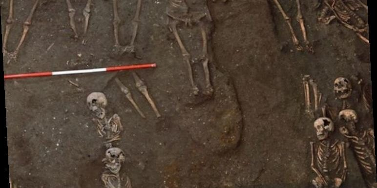 Archaeology news: Bone analysis reveals social inequality of medieval Cambridge