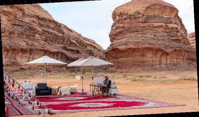 Saudi crown prince addresses World Economic Forum from the desert