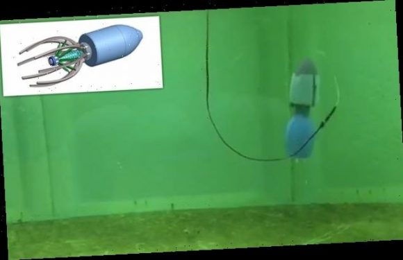 Jellyfish-inspired robot could explore underwater