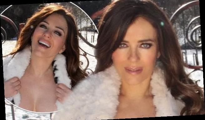 Elizabeth Hurley is flooded with requests to help fix the rusty gate