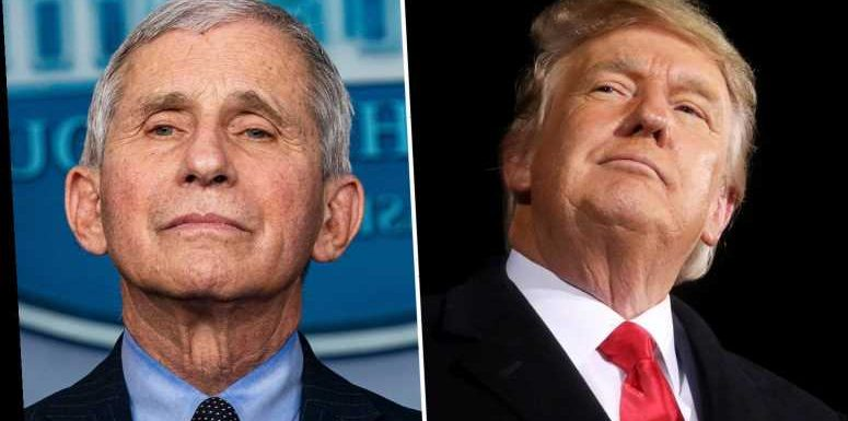 Dr Fauci claims 'macho guy' Trump thought Covid masks diminished his 'manhood' in stinging attack
