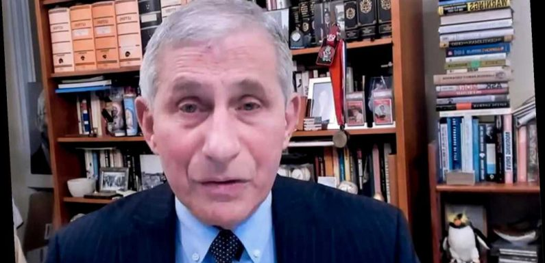 Fauci lays out US support for WHO under Biden administration