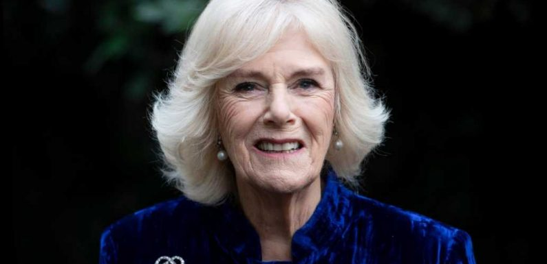 Camilla, Duchess of Cornwall Reveals Her Childhood Hobby as She Talks with Best-Selling Author