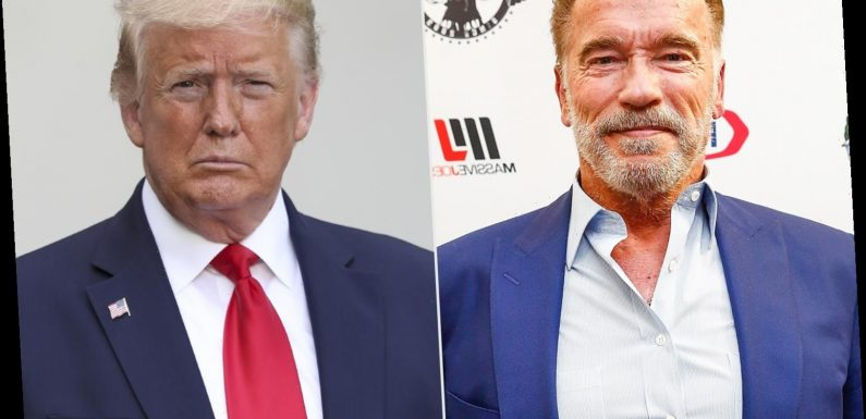 Arnold Schwarzenegger Calls Trump the 'Worst President Ever,' Compares Capitol Riots to Nazi Germany