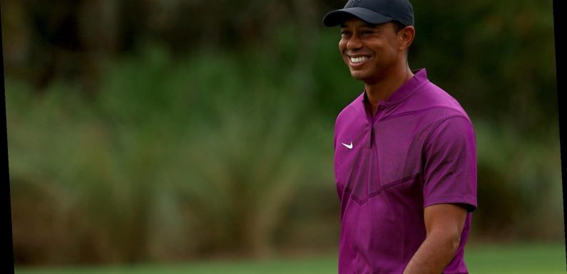 Tiger Woods' Net Worth: How Much The Iconic Golfer Is Actually Worth