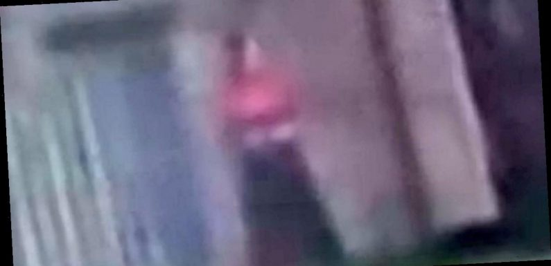 'Ghost of former Queen caught on camera' in deserted castle by filmmaker