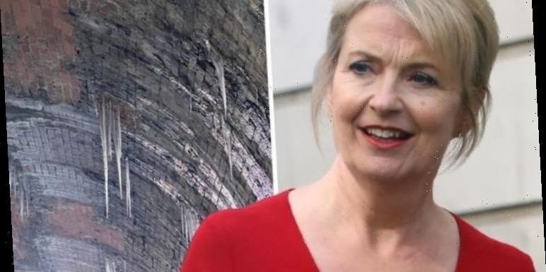 Carol Kirkwood urged to 'take hard hat' after worrying fans with icicles snap on cold walk
