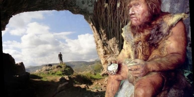 Archaeology news: Landmark study finds Neanderthals also used Homo sapiens technology