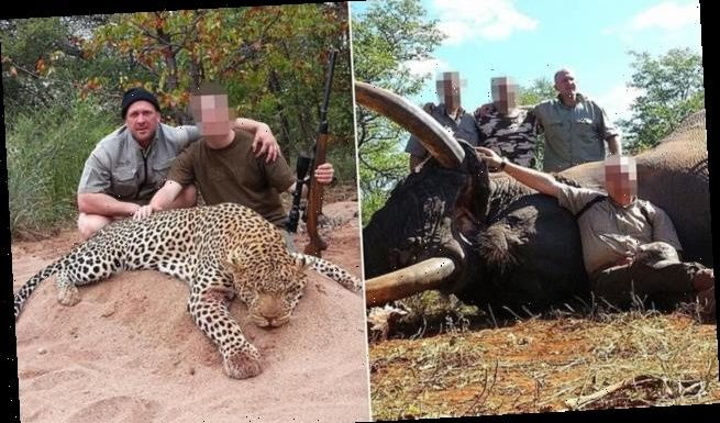 Hunter offering 'plentiful' endangered animals to kill in South Africa