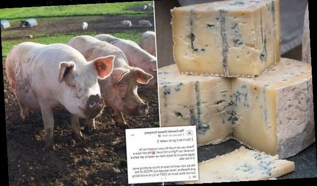 Cheese firm slashes prices after stock back-up due to Covid