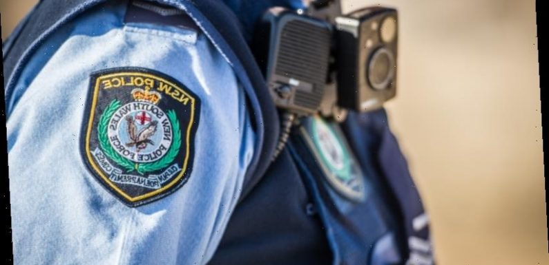 'Baby' sighting sparks police search of south Sydney bay