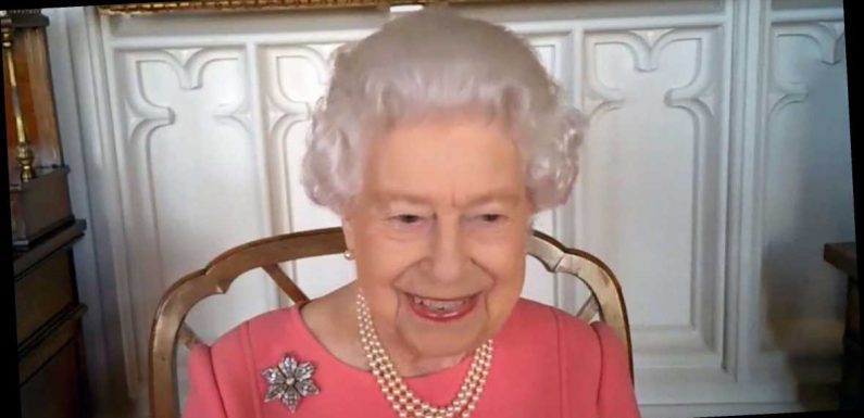 Queen Elizabeth II Is Well Accessorized for Zoom with Health Leaders