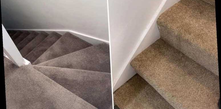 Savvy woman reveals how she dyed her stairs from brown to grey in one evening using Wilko £5 product