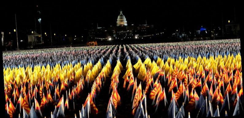 In a Stunning Tribute, Nearly 200,000 Flags Have Been Planted on the National Mall in DC