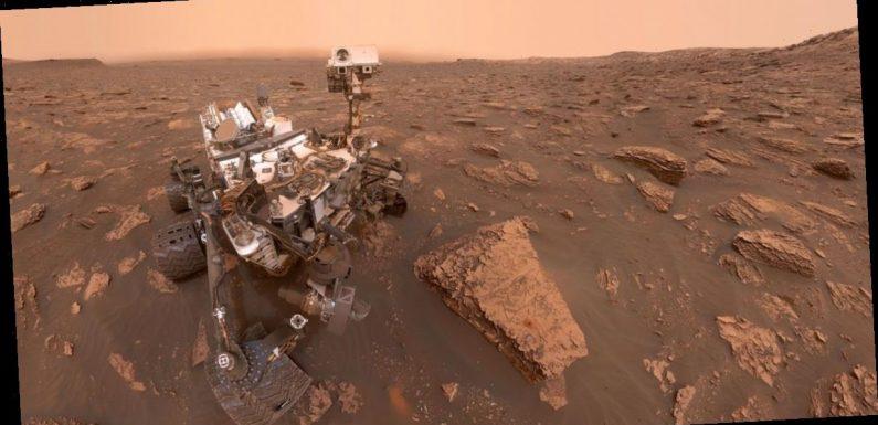 Mars full of 'widespread life' – it's just living underground, alien expert says