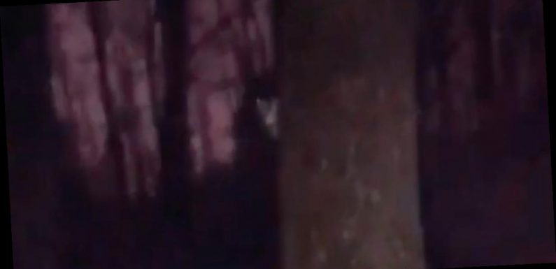 Chilling moment 'demon' appears behind tree as woman walks through park