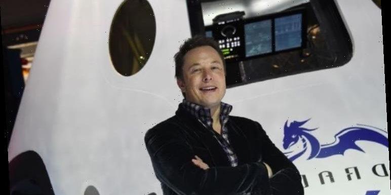 Elon Musk Mars plan branded 'delusional' by astrophysicist – 'like living on Everest'