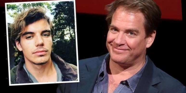 Michael Weatherly children: Does NCIS Tony DiNozzo star have children?